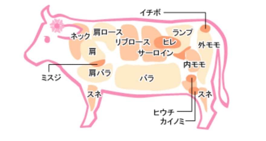 牛肉 部位 ランプ イチボ