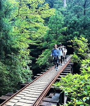 縄文杉のハイキング