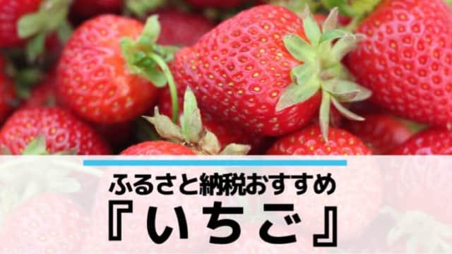 ふるさと納税おすすめイチゴ