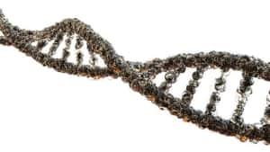 ゲノムの写真